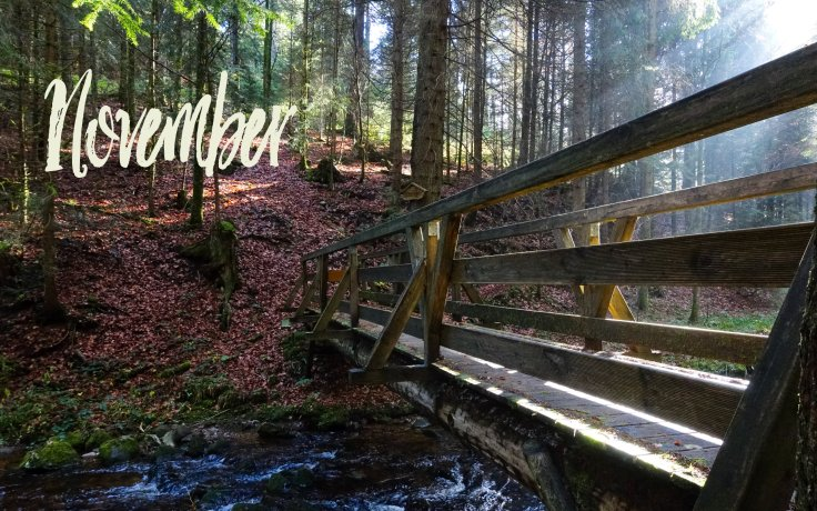 November_2880