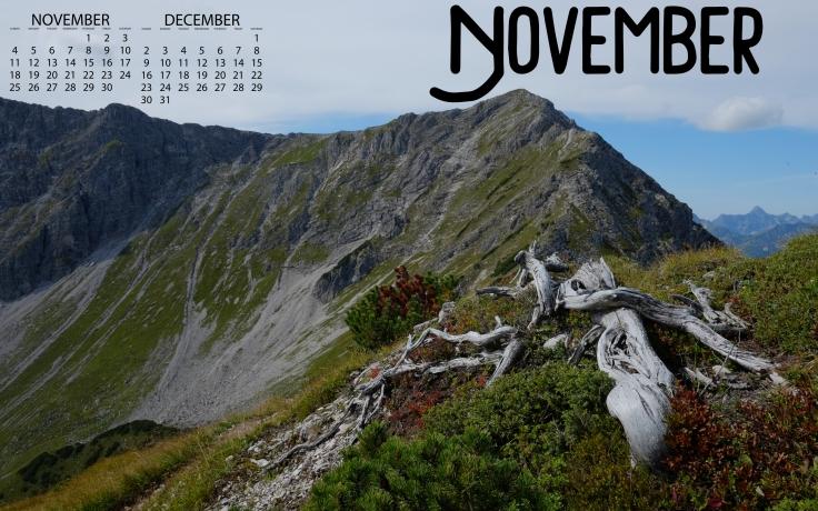 DTOM_November18_2560_Cal
